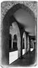 Treviso - Walkaround (macplatti) Tags: italy ita treviso veneto