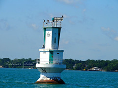D77 - light ( 1867 - 1967 ) (Zaklina & Zelimir) Tags: detroit river ballard reef livingstone channel light tower white green birds flags upper entrance boat canadian coast guard owner windsor ontario lake