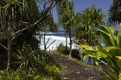 Kahanu Garden Coastline II (rschnaible) Tags: hawaii hana coastline us usa tour tourist pacific tropical tropics kahanu gardens outdoor sightseeing landscape ocena sea rocky jungle maui