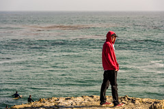 ArchitectGJA-8217.jpg (ArchitectGJA) Tags: california santacruz beach coast waves streetphotography montereybay surfing cliffs steamerlane oneill hurley wetsuit ripcurl lighthousepoint lighthousefield californiababy xcel marineanimals surfingsteamerlane