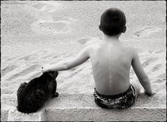 Le chat et l'enfant (bleumarie) Tags: mariebousquet photomariebousquet saintemarie pyrnesorientales roussillon catalogne suddelafrance bleumarie photodemariebousquet mariebousquetphoto mditerrane animal chat flin animaldomestique animaldecompagnie enfant enfance portrait spia sable plage muret vacances t amiti complicit tendresse affection douceur caresse dos petitgaron calme