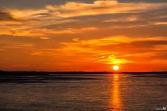 Golden hour (BraCom (Bram)) Tags: bracom sunset zonsondergang sun zon cloud wolk water dunes duinen beach strand reflections spiegeling clouds wolken evening avond summer zomer stellendam haringvliet goereeoverflakkee zuidholland nederland southholland netherlands holland canoneos5dmkiii widescreen canon 169 canonef24105mm bramvanbroekhoven nl