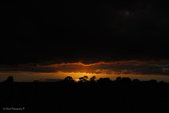 DSC_0212 (timmie_winch) Tags: nikon nikond3000 d3000 august august2016 2016 sun sunset sunsetsuffolk sunsetoversuffolkcountryside sunsetovercornfields sunsetovercornfield silhouette 18105mm 18105vr nikon18105mmvrlens shadows golden goldenhour goldenlight elliedunn ellie eleanordunn ells eleanor ellsdunn dunn landscape landscapephotography landscapephotographer naturephotographer naturephotography nature timwinchphotography tim timwinch winch debenham ip14 suffolk
