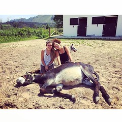 #cuadraelalisal #team2016 #rutasacaballo #horses #horseriding #turism #burros #asturias