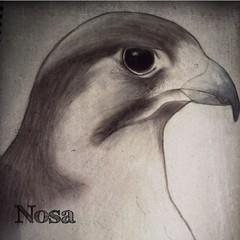 IMG_0937 (Nllo) Tags: falcon draw