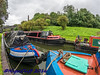 Bumblehole Canal Festival 10.09.2016 00015 (Nigel Cliff) Tags: bumbleholecanalfestival dudleycanal panasonic45150 panasonicgx7 samyang12mmf2 samyang8mmf35 dudleycanalfestival bumblehole panasonic25mmf17 samyang12mmf2bumbleholecanalfestivaldudleycanalpanasonic45150panasonicgx7samyang12mmf2samyang8mmf35