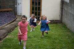 DSC_0645 (seustace2003) Tags: baile tha cliath ireland irlanda ierland irlande dublino dublin ire