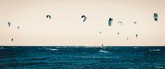 Wild is the wind (explored 13/09/16) (joseee1985) Tags: athens kitesurfing d750 nikon nissakia september16 2016 fall sea summer kites loutsa boards kiteboarding 70200mm greece surfers wind
