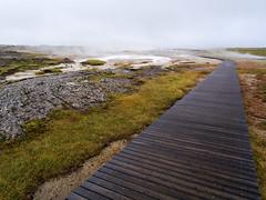 Hveravellir (Ondrej V.) Tags: hveravellir iceland geothermalarea hotsprings fumarole steam landscape outdoor