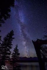 Milky Way over Pyramid Lake 2 (Thousands of Jackdaws) Tags: milkyway stars nightime night frame tress pyramidlake jasper alberta canada