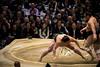 Sumo in Osaka-37 (Rodrigo Ramirez Photography) Tags: japan amazing traditional professional tournament osaka sumo yokozuna ozeki makuuchi hakuho sumotori sumotournament maegashira reikishi harumafuji topdivision