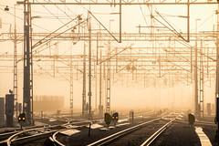Uppsala, November 12, 2014 (Ulf Bodin) Tags: mist fog train track sweden uppsala sverige dimma spår räls uppsalalän uppsalacentralstation uppsalaresecentrum