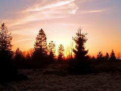 SAM_2870 (Ld\/) Tags: sunset sun nature beauty soleil belgium belgique coucher mic michel venn barrage hautes fagnes couc sourbrodt hohes waimes barraque