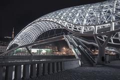 (inhiu) Tags: longexposure nightphotography travel bridge architecture night georgia nikon peace tbilisi roserevolution d800 urbex urbanexploartion bridgeofpeace inhiu