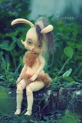 Daphn Sweetness of the spring (Tsubasa Make up doll) Tags: bjd lillycat loonette