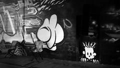 La Noria (werk-2at) Tags: tango tanz tando tangodancer tanzen mol moderntango vienna video clip werk2 donaukanal graffiti salztorbrcke tangoargentino canon alessandra peter seitz bunt urban urbantango city dance dancer danser milonga outdoor