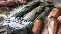 Scomber Scombrus ie Atlantic Mackerel (Fishmongers)  ( Myrina Town) (Lemnos - Greece) (OMD EM5II & mZuiko 12-40mm f2.8  Pro Zoom) (1 of 1) (markdbaynham) Tags: fish island greek mackerel north aegean hellas evil olympus greece grecia zuiko f28 fishmonger omd csc oly mz limnos hellenic m43 zd mft lemnos em5 1240mm mirrorless mzuiko m43rd em5ii zuikolic mypina