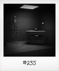 """#DailyPolaroid  of 20-5-16 #235 • <a style=""""font-size:0.8em;"""" href=""""http://www.flickr.com/photos/47939785@N05/28117281982/"""" target=""""_blank"""">View on Flickr</a>"""