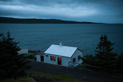 Our house in the trees (the bbp) Tags: iceland island islanda holmavik casa house alberi trees fiordi fiordo fjord fjordur mare sea blu blue notte night cielo sky nuvola nuvole clouds thebbp intimacy bianco white