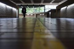 Low on the highwalk (Spannarama) Tags: uk shadow sunlight man london yellow reflections walking shiny floor barbican yellowline shallowfocus ratseyeview highwalk lowviewpoint