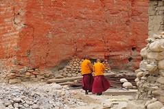 Nepal-Mustang-Lo Manthang (venturidonatella) Tags: nepal asia mustang colors colori monk monks village buddhism buddha children persone lomanthang people muro wall himalaya