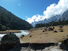 . (S_Artur_M) Tags: india indien travel reise yumthang sikkim panasonic tz10 lumix himalaya river landscape landschaft mountains