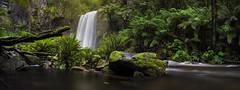 Rainy day at Hopetoun Falls (beaugraph) Tags: longexposure panorama rain landscape waterfall rainforest pano australia victoria panoramic thegreatoceanroad hopetounfalls otwayforest