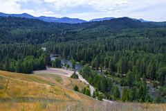 Cle Elum River Valley (Don Thoreby) Tags: forest canyon cascades washingtonstate slopes cascademountains cascaderange aspentrees ponderosapine cleelumriver suncadiaresort cleelumrivervalley
