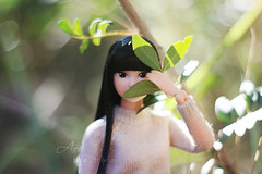 Silent beauty (uve_triple) Tags: momoko momokodoll petworks sekiguchi tartansyndrome citrus fresh bokeh macro doll 16scale outfit