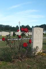Cimitero militare Canadese di Ortona 016 (Emiliano D' Astolto) Tags: cimitero militare canadese canadian cemetary bandiera flag rosa rose fiore flower prato verde green ortona italia italy military lapide lapid