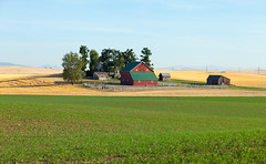 A Dream Farm (hobbitcamera) Tags: shangrila davenportwashington washingtonfarmland highway2 highway2washington washingtonfarm farmland dreamfarm davenportfarmlands