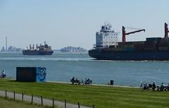 Bootjes kijken (Omroep Zeeland) Tags: ritthemse dijk boten kijken