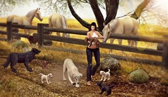 A day out in the country (Alexa M.) Tags: labs dogs secondlife jian thearcade pets animals trees country horses mina addams