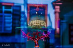 Haus im Glas (tina djebel) Tags: spiegelung spiegelungen reflection reflections reflektion reflektionen schaufenster bunt nikkor nikon dslr d7000 aschaffenburg