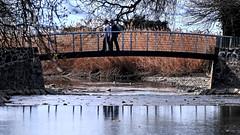 Sur fond de joncs (Diegojack) Tags: parc reflets morges passerelle rivires joncs indpendance