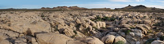 Lanfair Valley Granite pediment panorama (zoom in!) (MikeMalaska) Tags: mojave granite geology the4elements