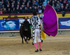 (Olmedo60) Tags: toros tauromaquia enriqueponce elfandi sebastiáncastella feriacastellón2015