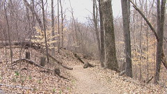 Little Grand Canyon, Shawnee National Forest, IL, #1 (artistmac) Tags: trees water forest river illinois spring sandstone hiking path canyon hike cliffs il erosion paths southernillinois shawneenationalforest timthompson