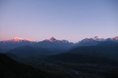 Sunrise over the Annapuna Himalayan range (ashaong) Tags: travel nepal mountains sunrise olympus pokhara annapurna himalayan omd sarangkot hiunchuli em5 macchapuchre