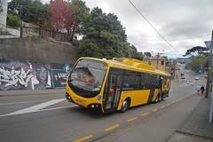 Mt Cook - Wallace Street (andrewsurgenor) Tags: electric transport transit nz wellington publictransport streetscenes trolleybus trolleybuses trackless nzbus gowellington