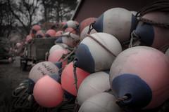 Bollar en masse (MagnusBengtsson) Tags: sverige boll bojar vitemölla skånelän fotosondag fs150322