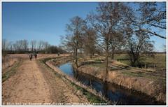 Friese Veen |   (Dit is Suzanne) Tags: netherlands spring walk nederland lente drenthe wandeling  friescheveen  views100 img3936  frieseveen canoneos40d  sigma18250mm13563hsm ditissuzanne  22032015