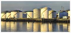Tanks (tsobanski19) Tags: morning blue panorama netherlands rotterdam harbour storage oil blau hafen morgen spiegelung tanks niederlande d800 l vopak europoort lagerung ltanks lagerlogistik