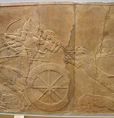 DSCN3030 (Nemoleon) Tags: june lions britishmuseum assyrian 2016 reliefsculpture