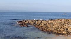 Fishermen (Rckr88) Tags: fishermen fish fishing sea water ocean rocks rockycoastline rock coastal coastline coast wave waves sand beach westerncape plettenbergbay plettenberg bay southafrica south africa travel outdoors nature