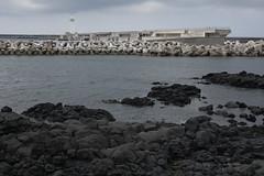 Black & White (C.C. CHANG ) Tags: black white landscape scenery sea harbor port jeju island korea lighthouse basalt concrete dock water monochrome colorless