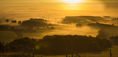 Condensing (steve.geliot) Tags: dawn mist vapour sussex downs glynde