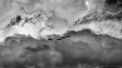 Thunderbolts And Lightning_7689 (www.jonathan-Irwin-photography.com) Tags: for excercise lightning thunder raf jaded arriving thunderbolts 2016 leeming 780605kc 790091kc 790090kc 790123kc