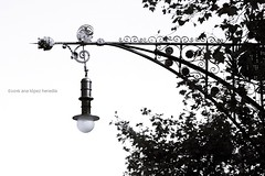 Farola modernista del Paseo de Gracia, Barcelona (Ana Lpez Heredia) Tags: analpezheredia canoneos600d canon eos 600d tamron18270mmf3563diiivcpzd tamron barcelona modernismo farola paseodegracia perefalqusiurp blancoynegro blackandwhite blanco negro bw black white streetlight catalua catalunya desdeelcoche