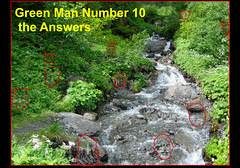 Green Man 10 The Answers (foggyray90) Tags: hiddenfaces puzzle game answers greenman